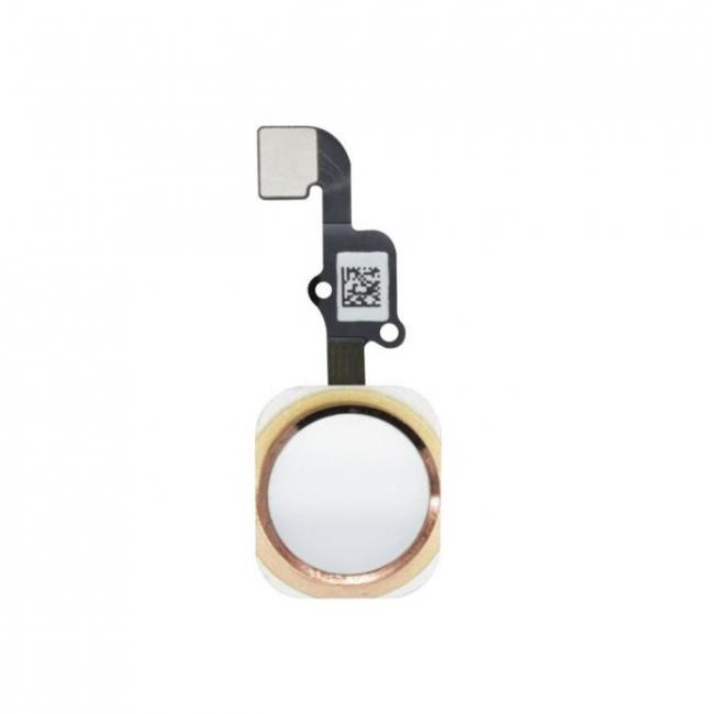 iPhone 6s and 6s Plus Home Button Flex Cable Assembly - White/Gold